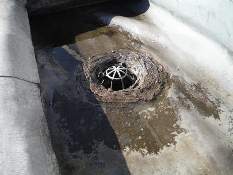 ゴムシート防水劣化
